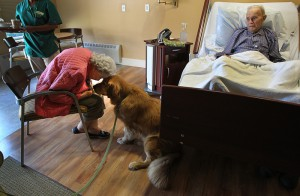 Danvers, MA., 09/12/12,  Kaplan Family Hospice House is  a 20 bed facility run by Hospice of the North Shore & Greater Boston. The house provides end-of-life care, along with grief resources, for families. Patrick the hospice dog visits with Mary and Warren Rand, cq, who have been married 71 years in December.