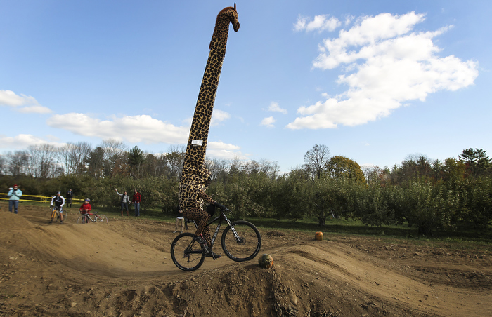Applecrest Farm Hampton Falls, N.H., Sunday, Oct. 27, 2013:  Dressed as a giraffe, David Romilly of Kensington navigates a bumpy course on his bike during a costume race, part of the Orchard Cross Cyclocross Race event.