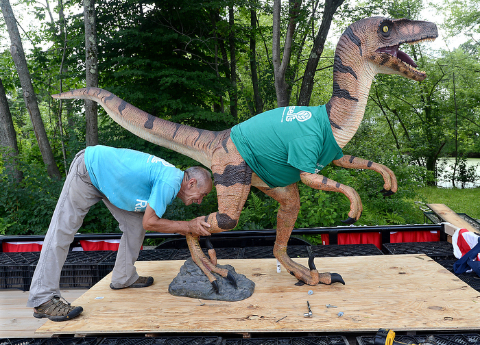 "Victor Tkachenko of Russell's Garden Center in Wayland positions a velociraptor statue as workers build a float for the Sudbury Fourth of July parade. Russell's entry in the parade showed the dinosaur wearing a gardener's hat,  holding a shovel and appear to be coming out of the jungle.  This year's parade theme: ""Sudbury through the eyes of children""."