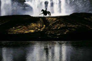 "A horse and rider perform during a ""sneak peek"" performance of Cavalia's show ""Odysseo"" in Somerville, Massachusetts August 6, 2013."